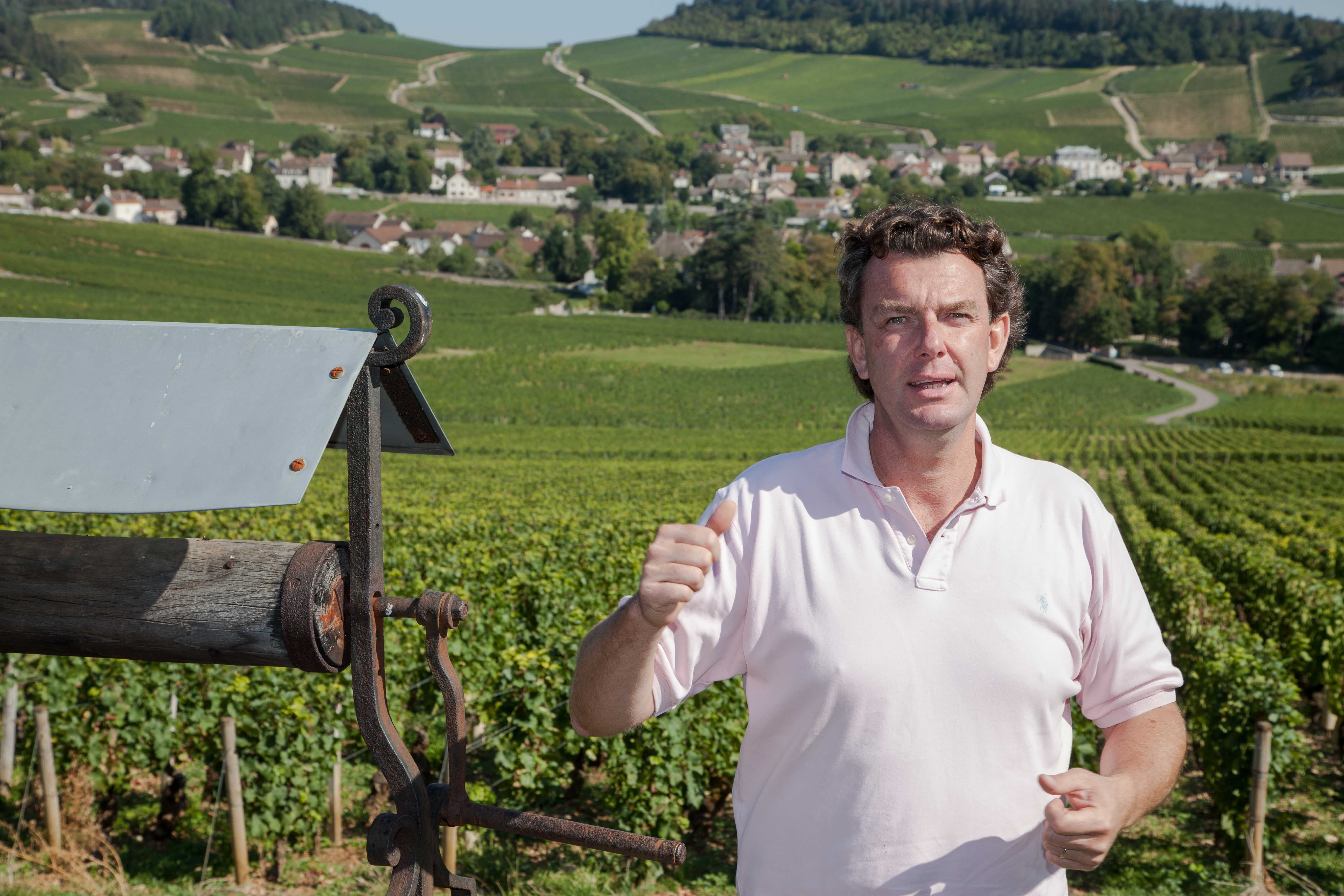 Amaury Devillard in den Weinbergen von Mercurey.