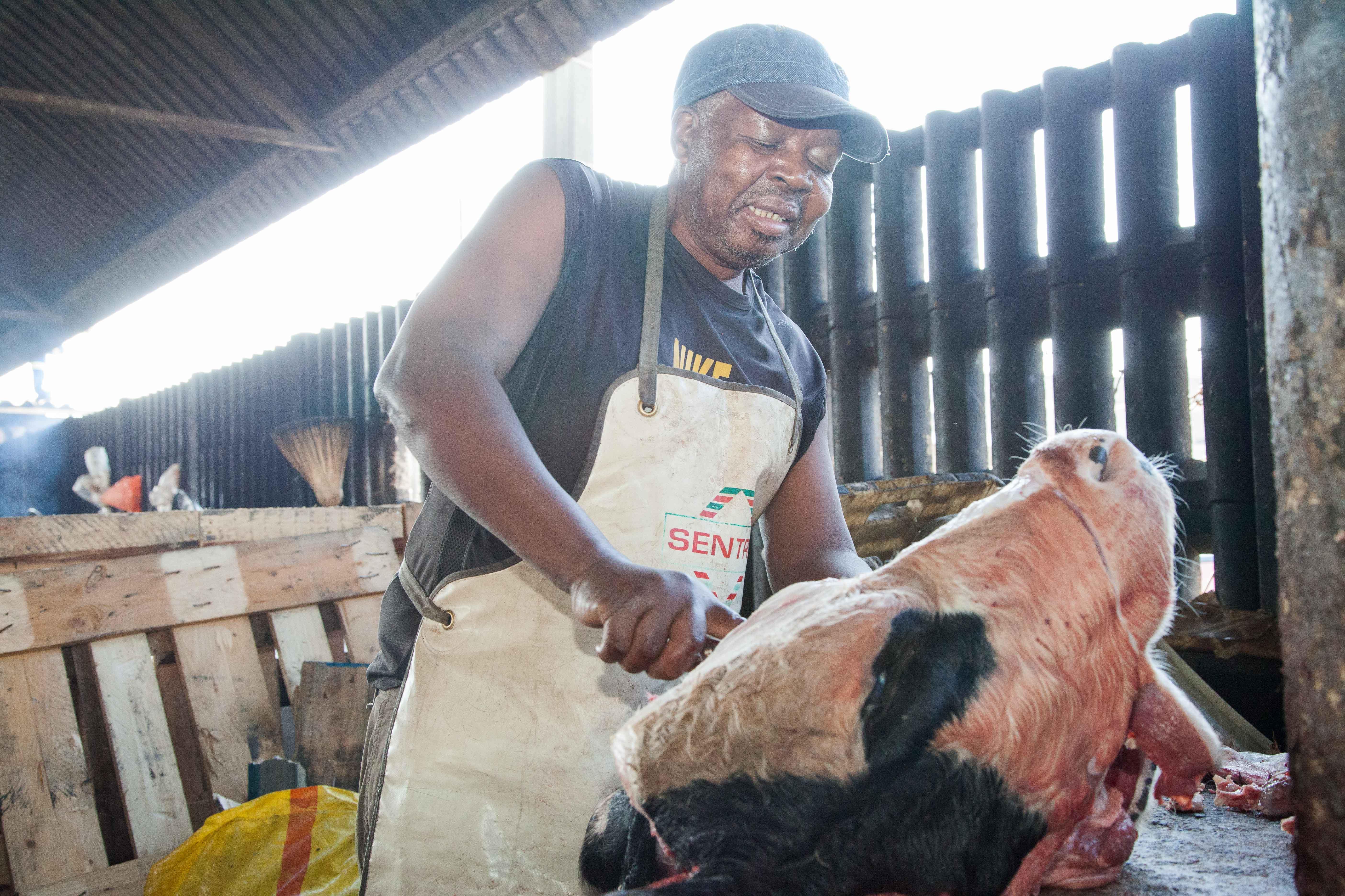Der abgetrennte Kalbskopf wird zerteilt und sofort für den Grill vorbereitet.