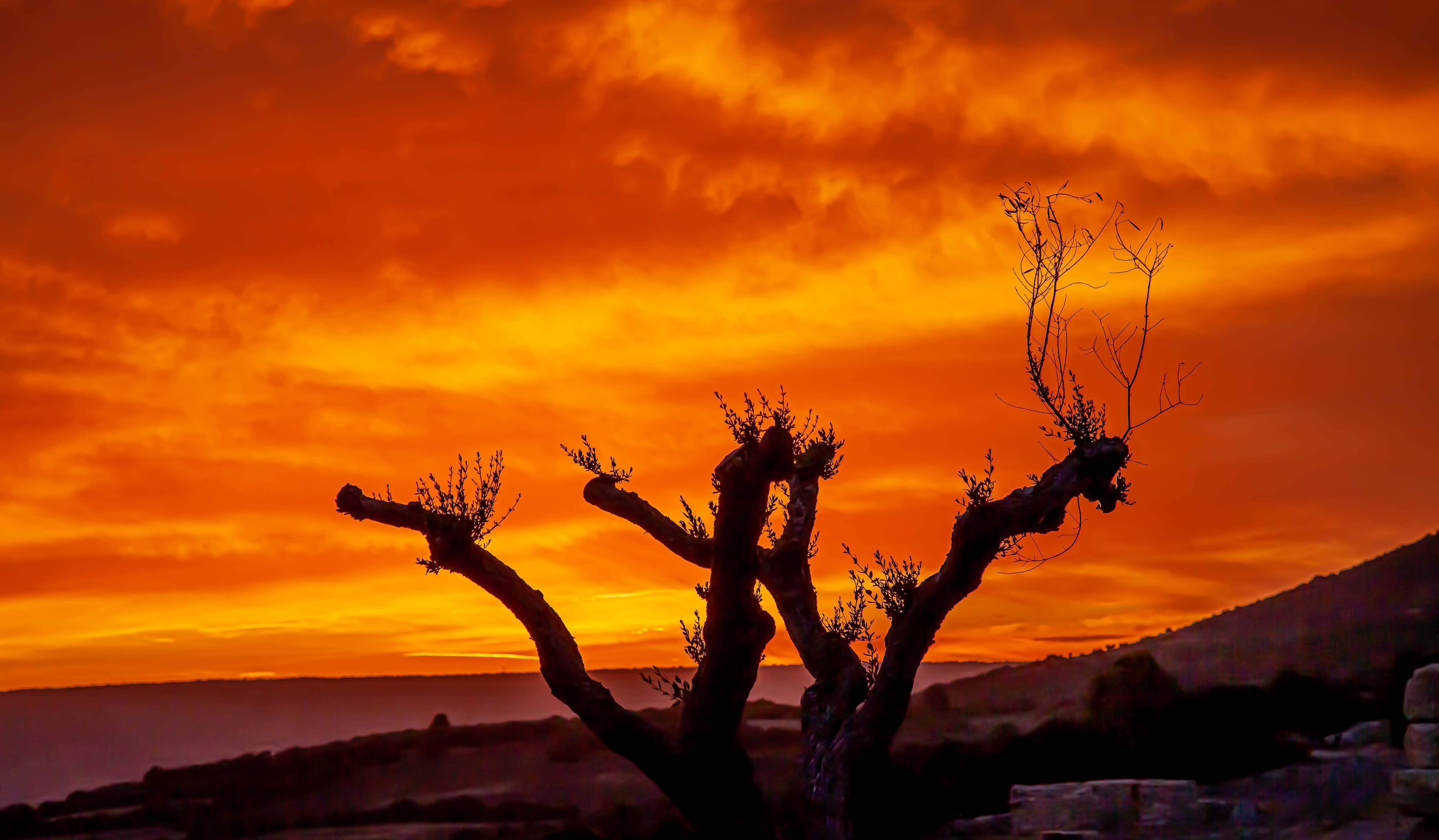 Nach Sonnenuntergang erstrahlt der Himmel für Minuten in gelb-roten Tönen.