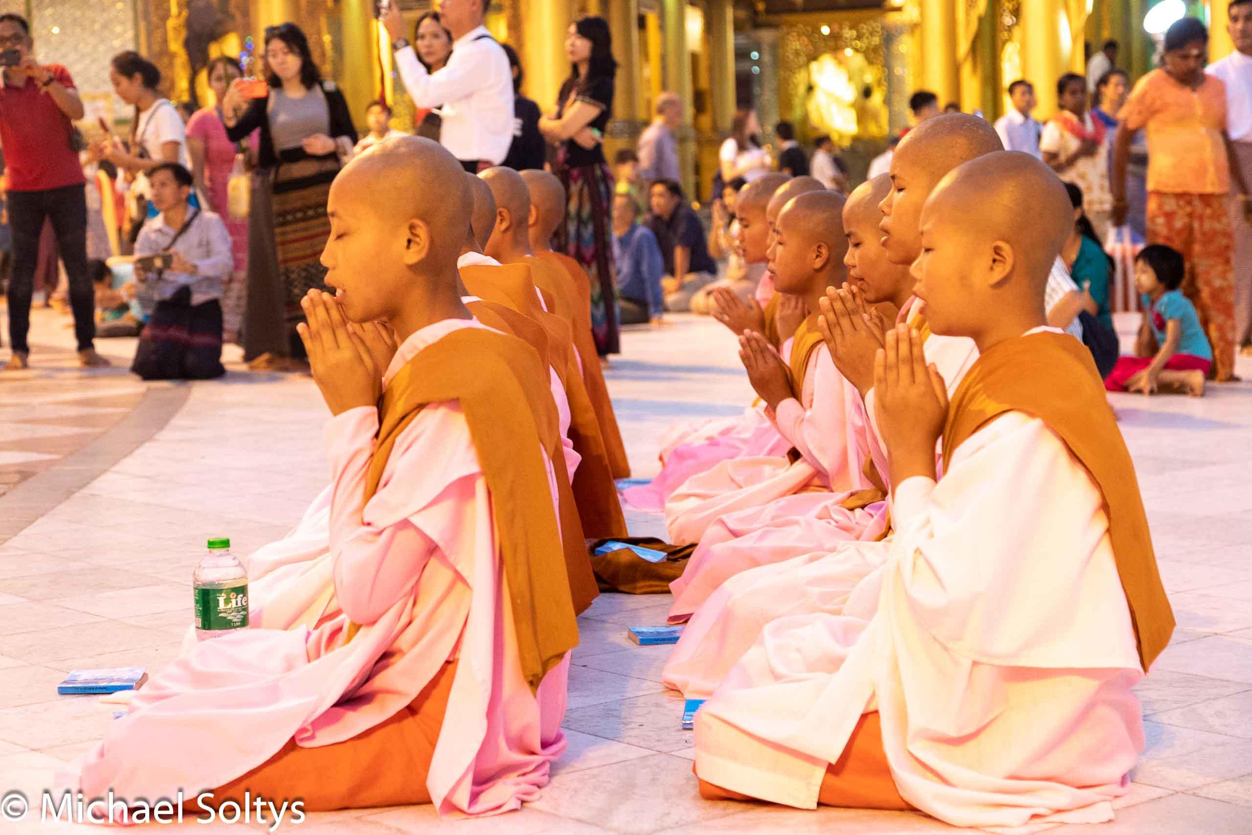 Junge buddhistische Mönche beten inmitten der Menschenmenge.