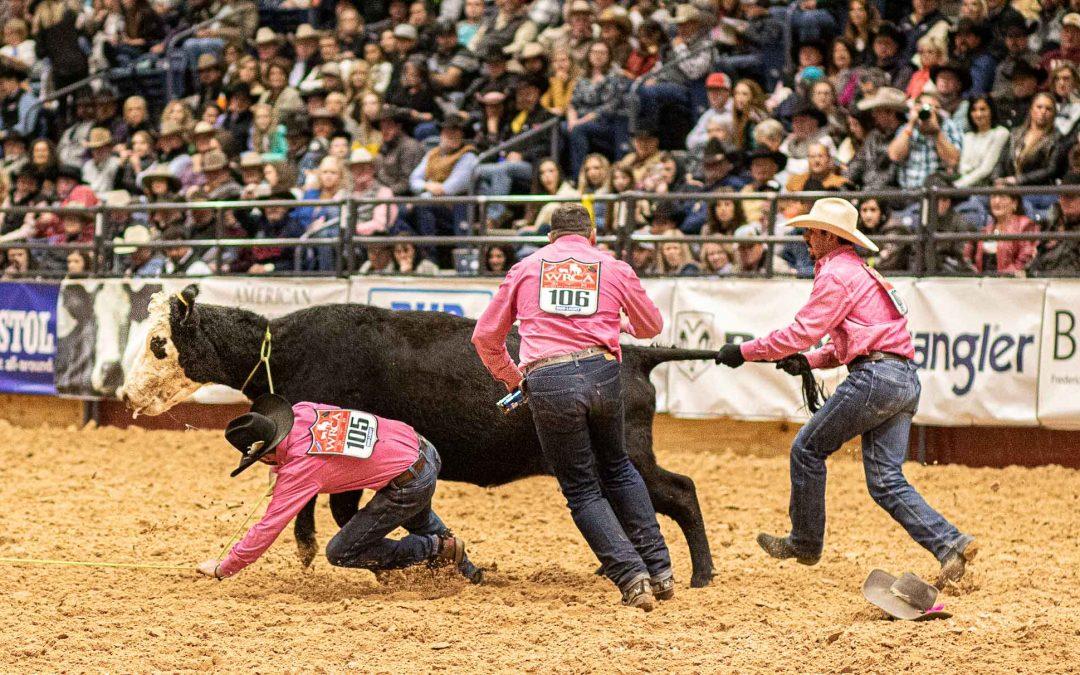 Fang die Kuh